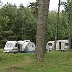 Tackeroo Touring Caravan Site