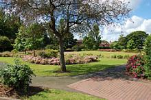 Cannock Park